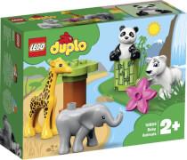 LEGO® Duplo 10904 Süße Tierkinder